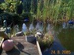 Teich vor2.jpg