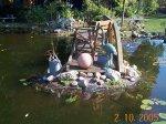Teich Pflanzen5.jpg